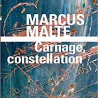 Marcus Malte - Carnage, constellation